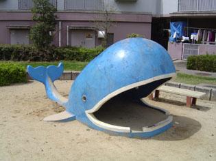 クジラと高速船_e0096277_1563077.jpg
