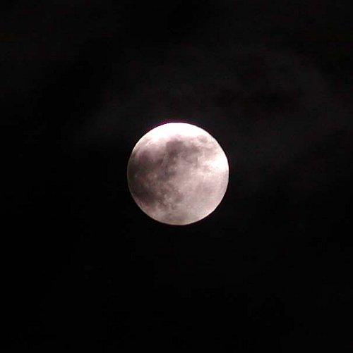 中秋の次の日の名月_c0057390_23531885.jpg