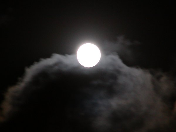 中秋の次の日の名月_c0057390_23535791.jpg
