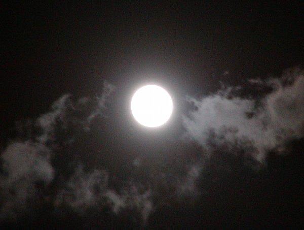 中秋の次の日の名月_c0057390_23541891.jpg