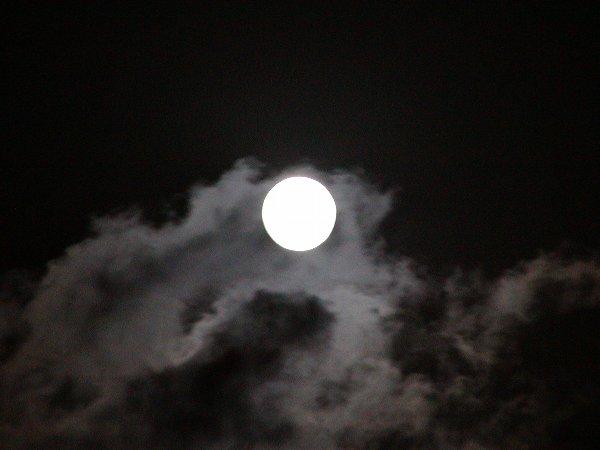 中秋の次の日の名月_c0057390_2354681.jpg
