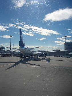はじめて飛行機に乗りました_d0080906_951677.jpg
