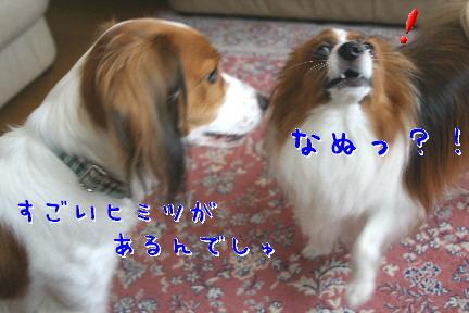 d0013149_15503872.jpg