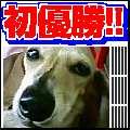b0108053_21552568.jpg