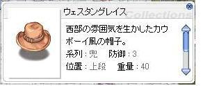 b0089090_138577.jpg
