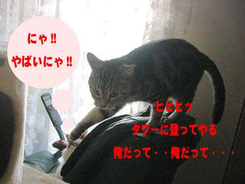 b0064663_16135348.jpg
