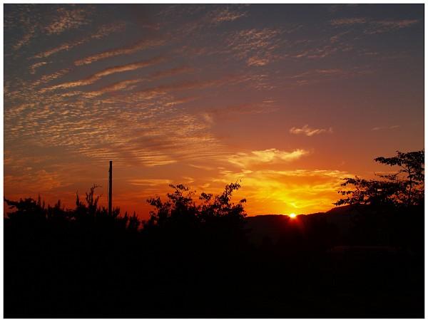 ディスタゴン2.8/25で夕焼けを撮る_c0042324_1194787.jpg