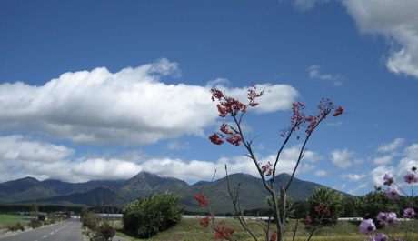 八ヶ岳クラフトフェア 1_b0100229_1523648.jpg