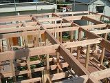 上棟:棟木、母屋に先張りシート_c0091593_2150463.jpg