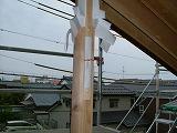 上棟:棟木、母屋に先張りシート_c0091593_2264785.jpg