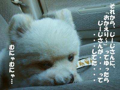 c0087521_1692487.jpg