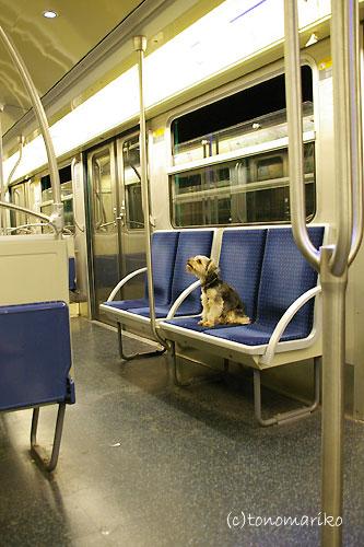 ひとりで地下鉄できるもん_c0024345_957511.jpg