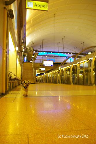 ひとりで地下鉄できるもん_c0024345_9593397.jpg
