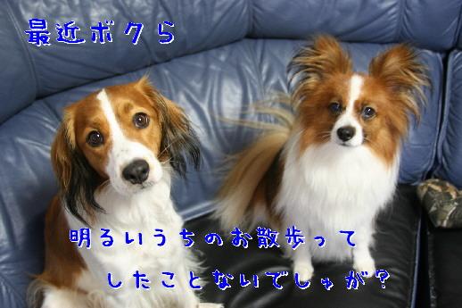 d0013149_2319389.jpg