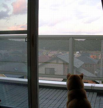 2006年10月11日(水)・・・愛ちゃんの長い一日_f0060461_19174814.jpg
