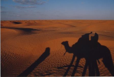チュニジア 旅日記7(続く絶景と感動と)_f0059796_0421715.jpg