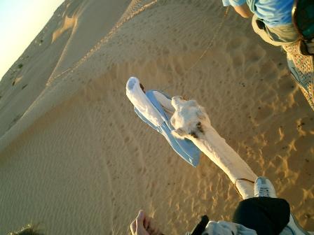 チュニジア 旅日記7(続く絶景と感動と)_f0059796_0425377.jpg