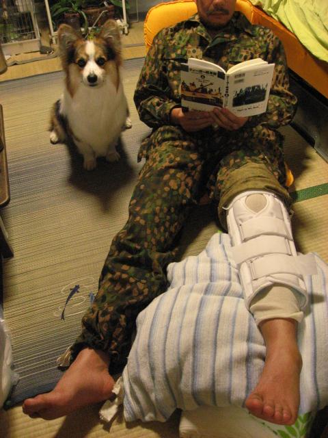 負傷兵の様子_b0097747_12351030.jpg