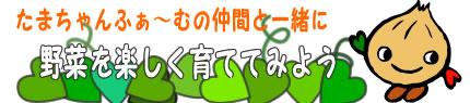 玉井農園たまちゃんふぁーむキャラクターデザイン_e0082852_14335663.jpg