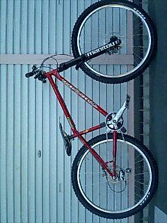 NEWバイク_a0065393_7173998.jpg