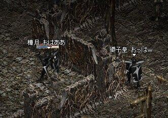 b0036436_2084099.jpg