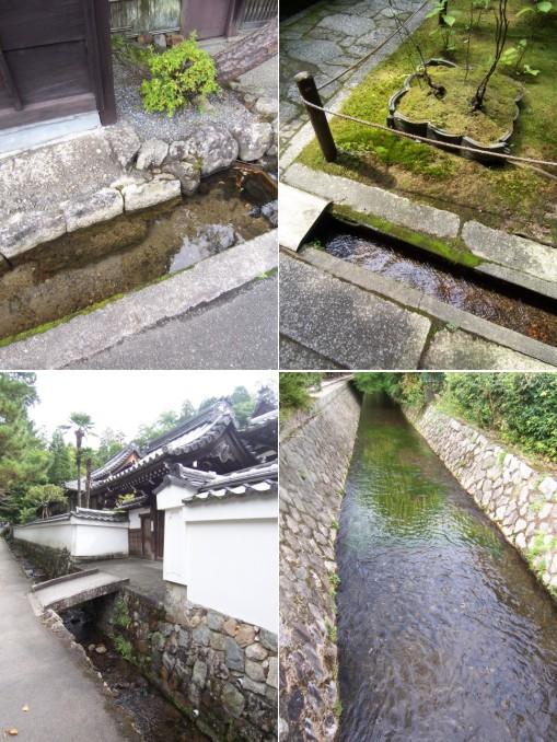 京都を巡る_c0071305_18494644.jpg