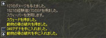 b0056117_5191249.jpg