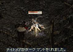 f0101117_21382845.jpg