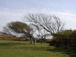 ワイトト島 Isle of Wight_d0026822_1137409.jpg