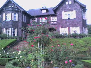 旧古河庭園より。_d0061857_12211984.jpg