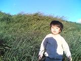 f0015381_5444111.jpg