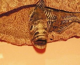 歌う古代魚2!_f0077727_19542697.jpg