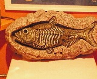 歌う古代魚2!_f0077727_1954761.jpg