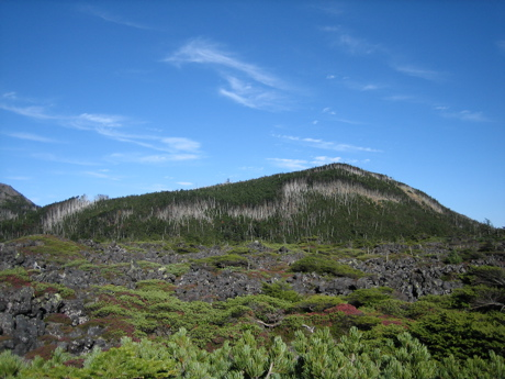 八ヶ岳クラフトフェア 5_b0100229_16554194.jpg