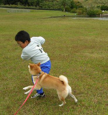 2006年10月15日(日)・・・龍平君姉妹と愛ちゃん_f0060461_21275585.jpg