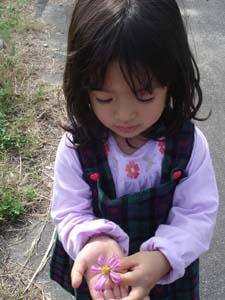美しい日本の田舎_f0106597_0175350.jpg