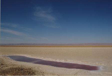 チュニジア 旅日記9 (塩湖から谷へ)_f0059796_0265988.jpg