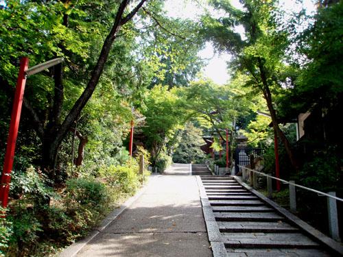 祇園白川_e0048413_2141314.jpg