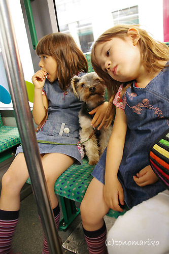 バスに揺られてネムネムモード・・・_c0024345_10562777.jpg