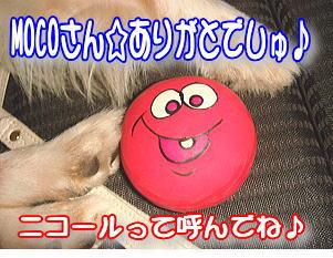 f0011845_039202.jpg