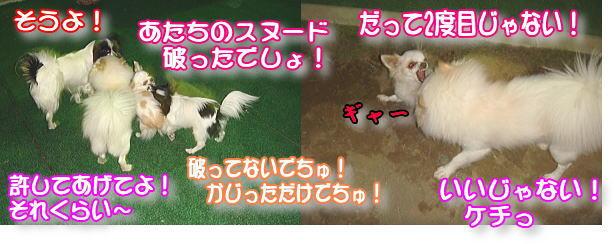 f0011845_0584335.jpg