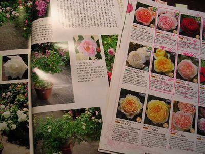 2006年10月18日(水)愛ちゃんと薔薇_f0060461_20313219.jpg