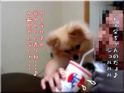 b0078073_10395773.jpg