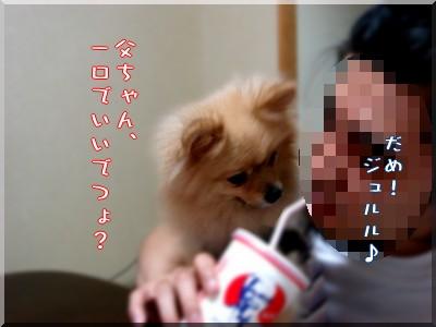 b0078073_10411779.jpg