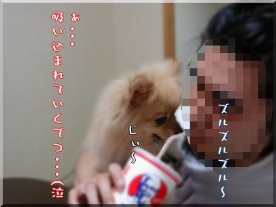 b0078073_10465967.jpg