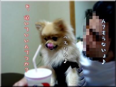 b0078073_1048664.jpg