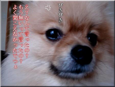 b0078073_10494556.jpg