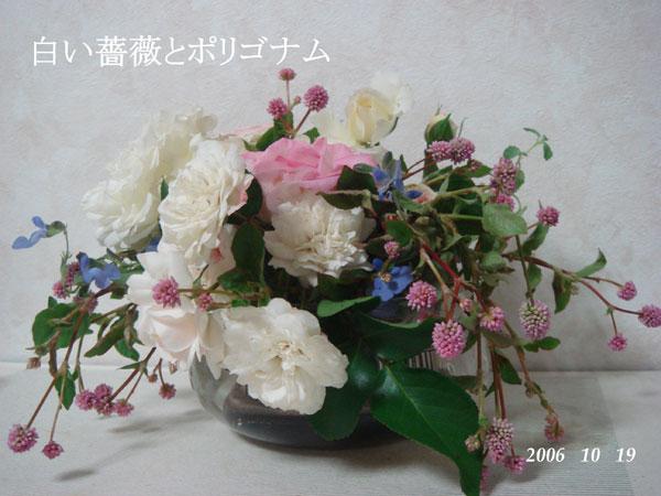 f0057006_16302824.jpg