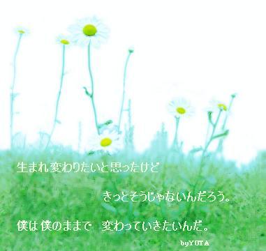 b0048413_23313415.jpg