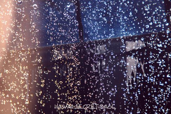 Rainy Day_f0015440_2082927.jpg